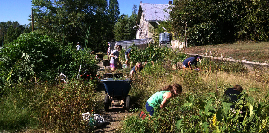 Volunteers Help Weed Family Garden