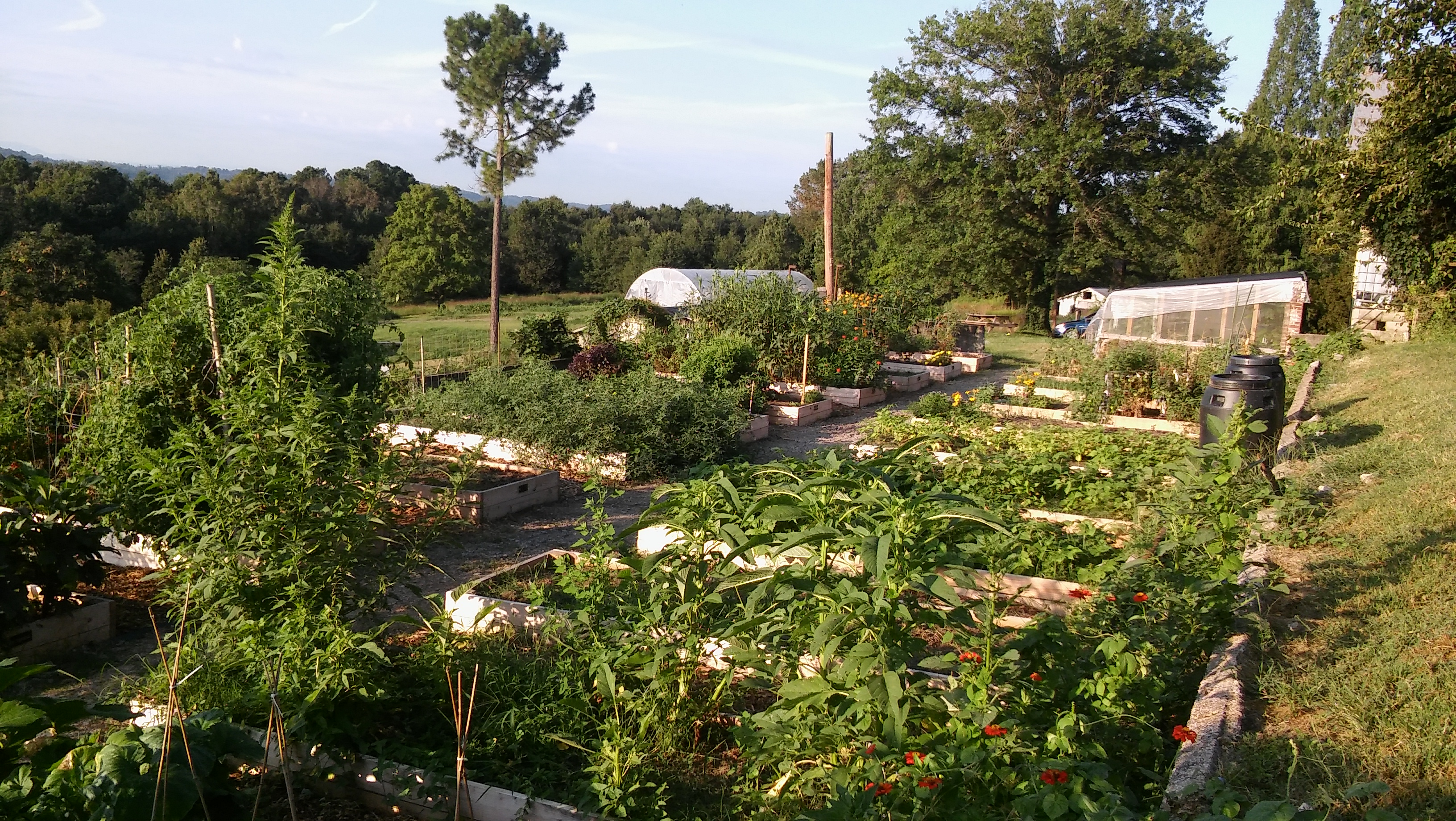 Our Easy Access Family Garden Accommodates Those Who Want To Grow Food For  Themselves And Their Families But May Not Have The Ability To Garden At Home .